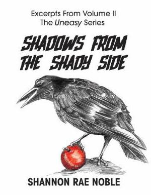 Pre-release Excerpt Booklet Cover Art